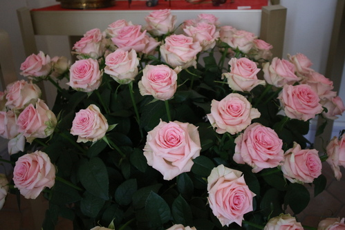 Roses blanches, coeur rose